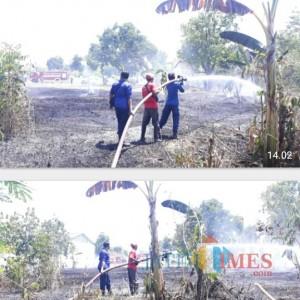 Warga Sembarang Bakar Sampah, Semak Belukar Kepatihan Terbakar