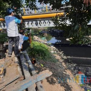 Kali Bambe Dibersihkan, Aliran Sungai Brantas pun Lancar