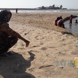 Pulihkan Ekonomi di Masa Pandemi, Pemdes Socorejo Luncurkan Wisata Pantai Semilir