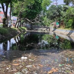 Kumuh dan Berbau, Kondisi Sungai Gude Ploso Jombang Tercemar Limbah Industri