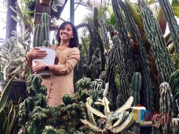 Lily saat membawa kaktus koboi berdampingan dengan kaktus monstroses di standnya Kelurahan Temas, Kecamatan Batu. (Foto: Irsya Richa/MalangTIMES)