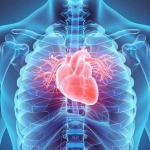 Hari Jantung Sedunia, Kenali Penyebab Utama Gejala Penyakit Jantung