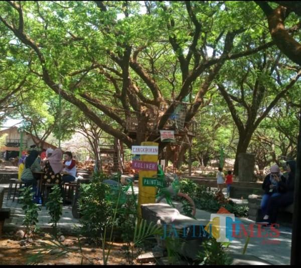 Wisata trembesi yang ada di tengah Kota Madiun. (foto Dodik eko p/MadiunTIMES)