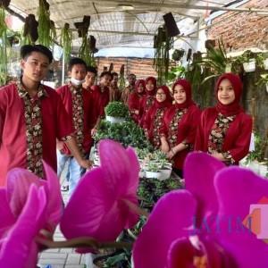 Dau, Surga Flora bagi Para Pecinta Tanaman dengan Harga Terjangkau