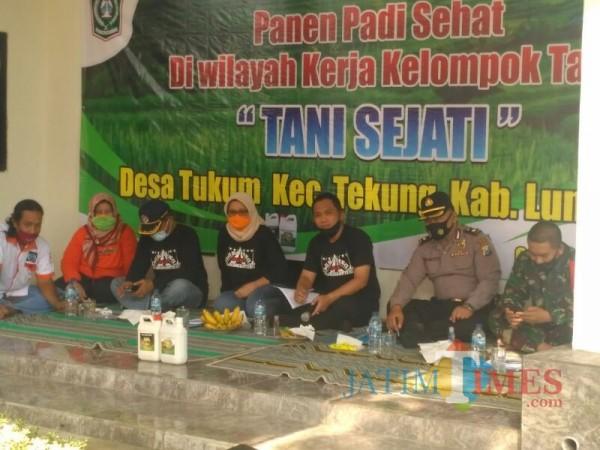 Panen Padi Organik ( Foto: Bramastyo Dhieka Anugerah / Jatimtimes)