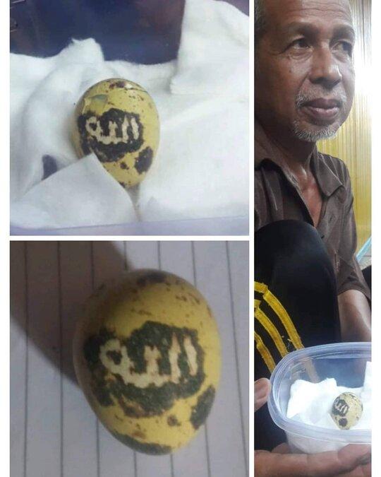 """Telur puyuh bertuliskan """"Allah"""". (Foto: IG ndorobeii)"""