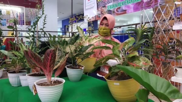 Suasana pameran offline yang digelar di Hall Utama Cyber Mall Malang (Pipit Anggraeni/MalangTIMES).