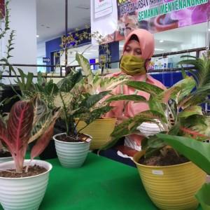 Dua Hari, Perputaran Uang di Pameran Bunga Terbesar Malang Raya Tembus Rp 150 Juta