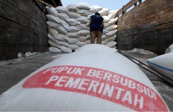 Ilustrasi pupuk subsidi yang alokasinya dikeluhkan oleh para petani di Kabupaten Malang (Foto : Istimewa)