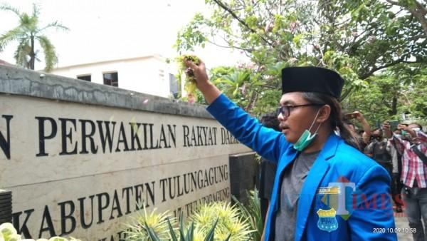 Ketua PMII Tulungagung, M. Afifudin saat menaburkan bunga di gedung DPRD Tulungagung (Joko Pramono for Jatim TIMES)