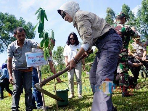 Wali Kota Batu Dewanti Rumpoko saat menanam pohon di Desa Oro-Oro Ombo beberapa saat lalu. (Foto: Irsya Richa/MalangTIMES)