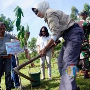 Tanam 10 Ribu Pohon di 19 Titik, Peringatan HUT ke-19 Kota Batu Hijaukan Jalan Protokol