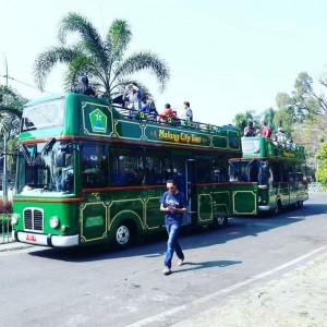 Kangen Jalan-Jalan Keliling Kota Malang? New Bus Macito Siap Sambut Wisatawan di Awal 2021