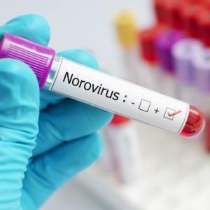 Mewabah di China, Nyatanya Juga Ditemukan di Indonesia, Apa Itu Norovirus?