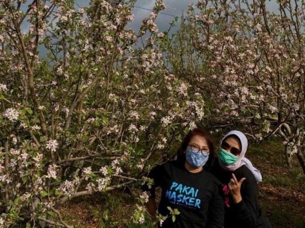 Wali Kota Batu Dewanti Rumpoko saat swafoto bersama temannya di perkebunan apel Kecamatan Bumiaji. (Foto: istimewa)