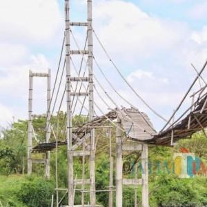 Jembatan Miliaran Rupiah yang Dibangun Pemkot Surabaya di Mangrove Letoy