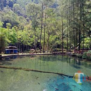 P-APBD 2020, Target PAD Wisata Kabupaten Blitar Kembali Dinaikkan