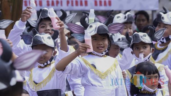 Para penari Sapi Bengah saat menunjukkan aksi minum susu dalam launching Desa Wisata Edukasi Susu dan Sapi Perah di Dusun Brau, Desa Gunungsari, Jumat (23/10/2020).