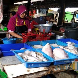 """Akibat Kompak """"Not For Sale"""", Harga Eceran Gurami di Tulungagung Ikut Naik"""