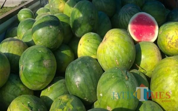 Semangka hasil panen petani di Tulungagung