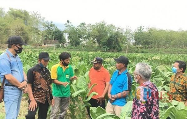 Dispertapa Kabupaten Blitar saat studi banding tembakau ke Kabupaten Rembang