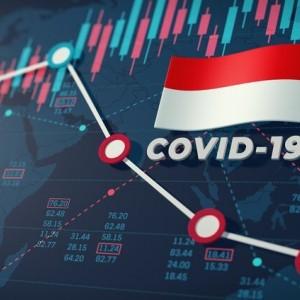 Indonesia Resesi, Ini Langkah Istana untuk Pemulihan Ekonomi Nasional