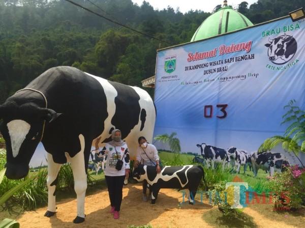 Beberapa wisatawan saat berswafoto di Kampung Sapi Bengah, Dusun Brau, Desa Gunungsari. (Foto: Irsya Richa/MalangTIMES)
