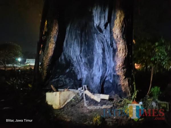 Pohon tua terbakar diduga akibat api dupa