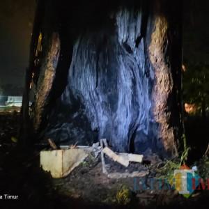 Pohon Tua di Kuburan Doko Blitar Terbakar, Diduga Akibat Sesajen Dupa