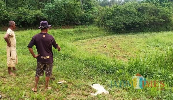 Berserakan, Begini potret kabel yang mengakibatkan petani meninggal dunia, (Foto: Redaksi BangkalanTIMES)