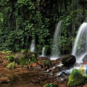 Sumber Telu Lumajang, Destinasi Wisata Ritual dan Terapi Air