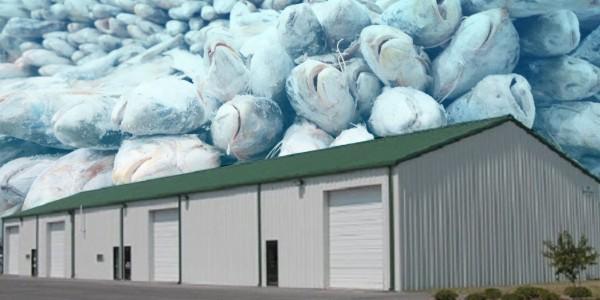 Foto, ilustrasi gudang pendingin ikan