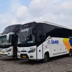 Asyik Bisa Travelling Lagi, Bus DAMRI Jurusan Sendang Biru Dibuka Kembali