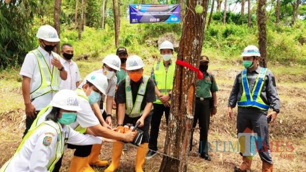 Pjs Bupati Trenggalek dan seluruh unsur terkait lakukan pemotongan pohon secara simbolis
