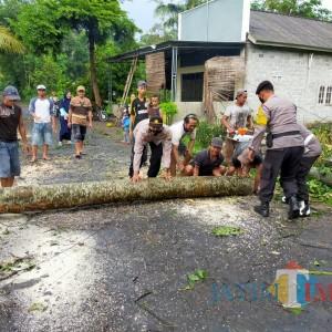 Puting Beliung Rusak 2 Rumah dan 2 Kandang di Ponggok Blitar