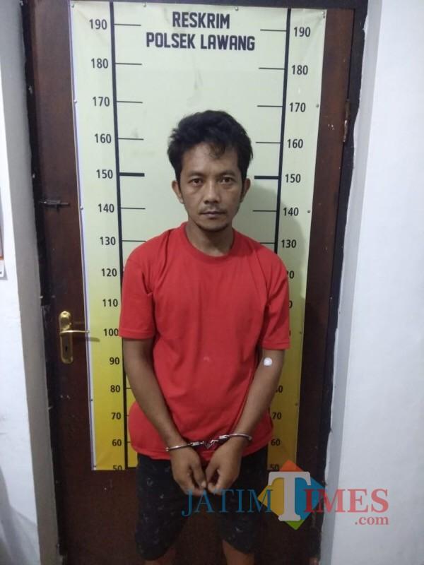 Badauroji alias Cowek saat diamankan jajaran kepolisian Polsek Lawang karena kasus pengedaran narkotika (Foto : Polsek Lawang for MalangTIMES)