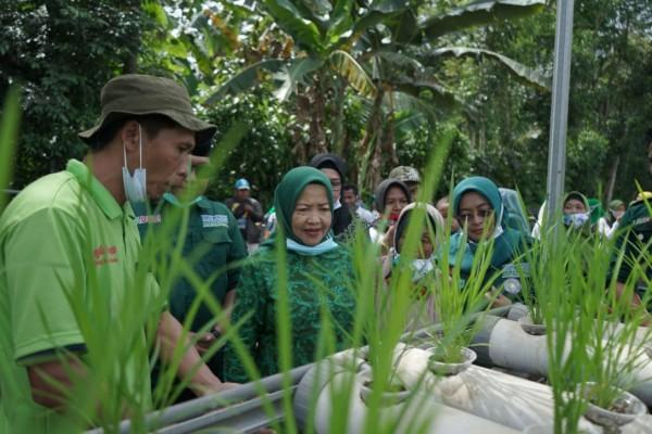 Calon Bupati Malang nomor urut dua yakni Lathifah Shohib saat menyapa dan melihat hasil tani dari petani di wilayah Pagelaran. (Foto: Dok. Malang Bangkit)