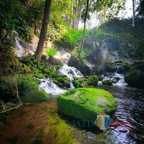 Sumber Telu Lumajang (Foto: Bramastyo Dhieka Anugerah / Jatim Times)