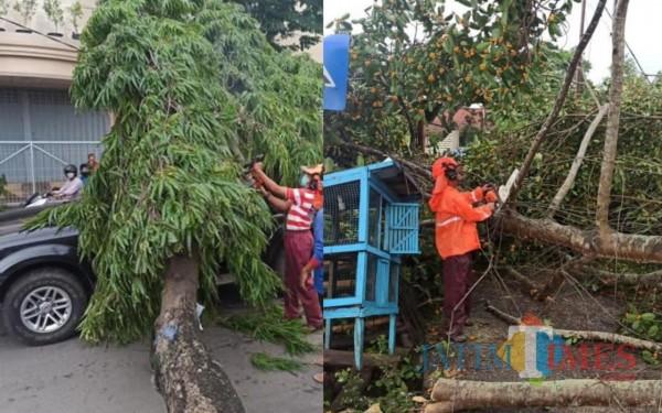 BPBD Bangkalan: Waspada Jelang Puncak Musim Hujan 2020 hingga 2021