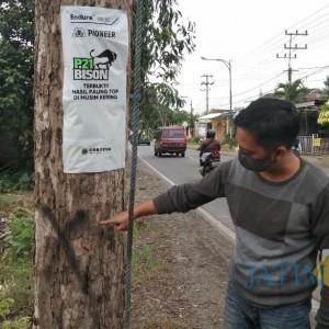 Ternyata, Kasus Penebangan Pohon Sonokeling Ada Permohonan dari Polres Tulungagung, JPIK akan Lapor Gubernur