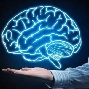 Terbukti Secara Ilmiah, Ini Perbedaan Otak Muslim dan Ateis