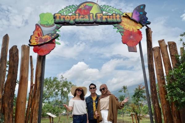 Salah satu spot Tropical Garden di Batu Love Garden. (Foto: Jatim Park Group)