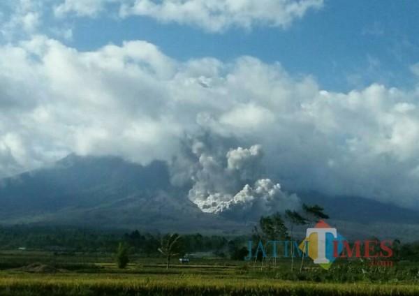 Guguran awan panas gunung Semeru hari ini (Foto : Warga sekitar Semeru / Jatim TIMES)