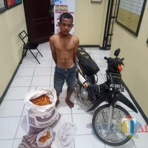 Nekat Nyolong Sekarung Cabai, Pemuda Nglegok Diamankan Polisi