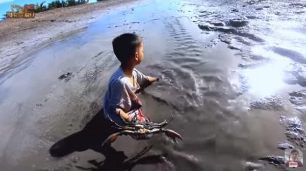 Tangan Kosong, Bocah Ini Tangkap Kepiting Jumbo di Tepi Laut