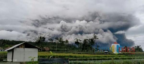 Awan panas guguran dari Gunung Semeru yang diunggah netizen ke medis sosial (Foto : Netizen / Jatim TIMES)
