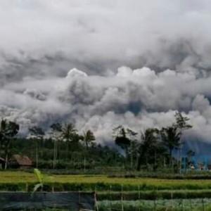 Dibawa Angin, Awan Panas Timbulkan Hujan Debu di Wilayah Utara Semeru