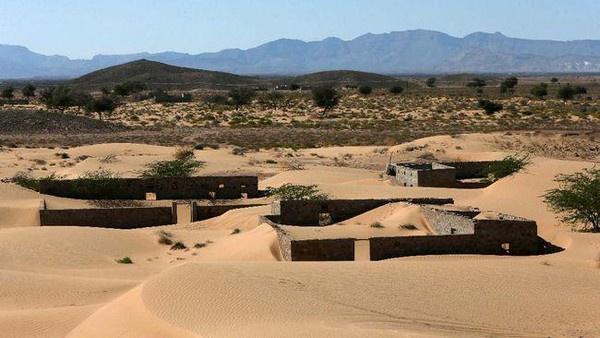 Wadi Al-Murr yang muncul kembail setelah 30 tahun lenyao ditelan pasir. (Foto: Dok AFP).