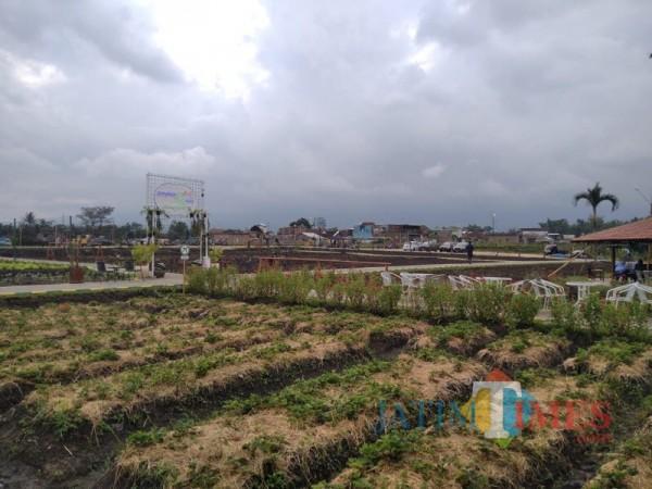Selain Jual Beli Tanah, Investasi Pariwisata dan Agroindustri Meningkat di Era Pandemi