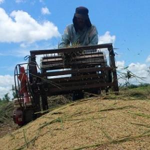 Pembangunan Pertanian di Blitar Terdongkrak Berkat Bantuan Alsintan